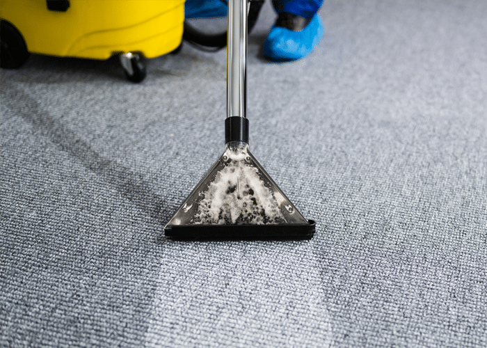 professional-carpet-and-upholstery-cleaning
